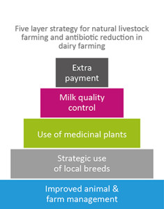 5 layer strategy for natural livestock farming