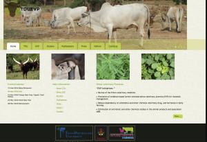website TDU