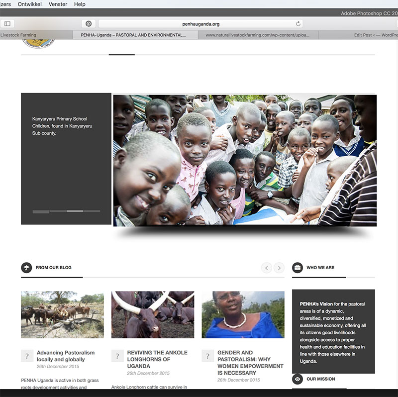 website PENHA